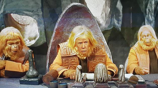 Tribunal Trump by Christopher McKenzie