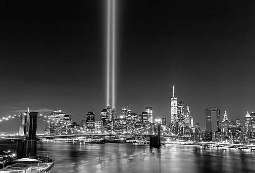 Tribute in Lights by Elyssa Drivas