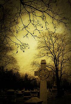 Tributes by Gary Shepard