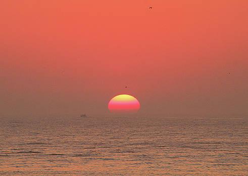 Tricolor Sunrise by Robert Banach