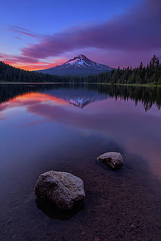 Trillium Magic by Vincent James