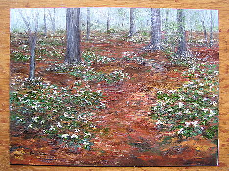Trilliums after the rain by Jan Byington