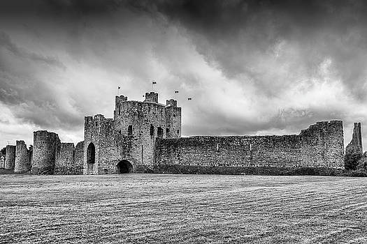Trim Castle , Co.Meath by Martina Fagan