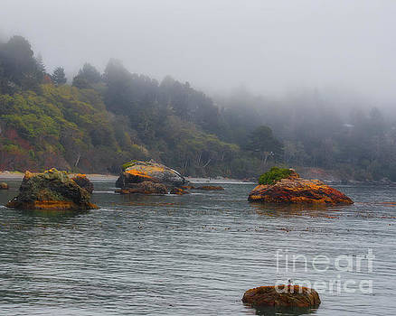 Trinidad California Coast covered with early morning mist by TN Fairey