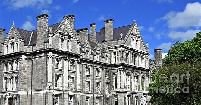 Trinity College by Crystal Rosene