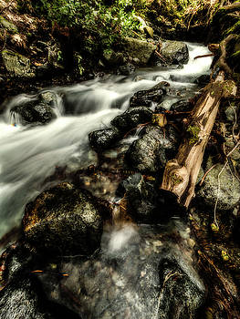 Trinity County Runoff by Michele James