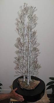 Trinity  of Birch Trees by Douglas Kiburz