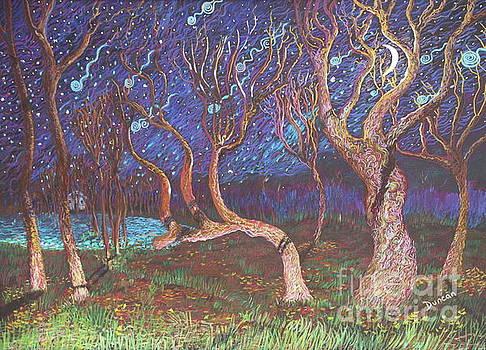 Stefan Duncan - Trinity Tree By Moonlight
