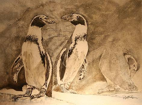 Trio-Humboldt Penguins by Susie Gordon