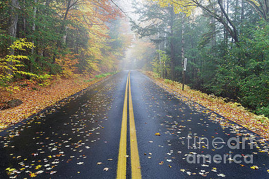 Tripoli Road - Woodstock New Hampshire by Erin Paul Donovan