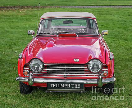 Adrian Evans - Triumph TR5