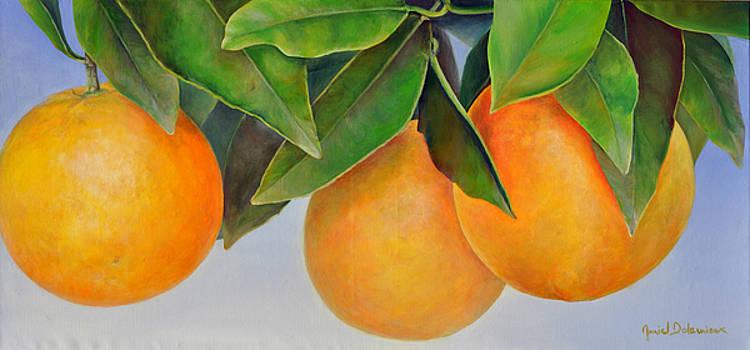 Trois Oranges by Muriel Dolemieux