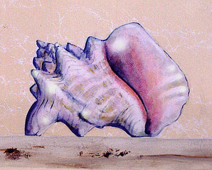 Trompe l'oeil Conch shell by Thomas Lupari
