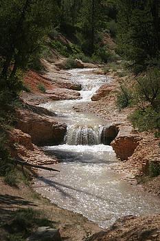 Tropic Creek by Marie Leslie