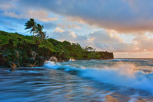 Tropic Dreams by Michael Sweet