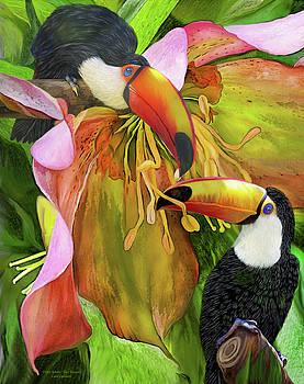 Tropic Spirits - Toco Toucans by Carol Cavalaris