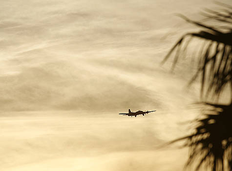 John Clark - Tropical B-17 Flying Fortress