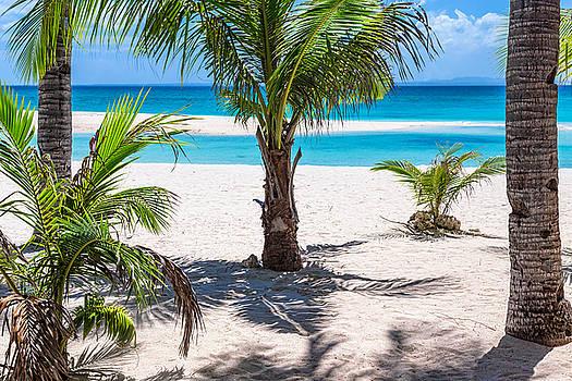 James BO Insogna - Tropical Balcony View