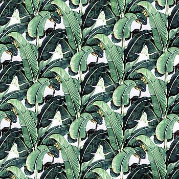 Tropical Banana Leaf by Vitor Costa