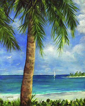 Carolyn Shireman - Tropical Beach One