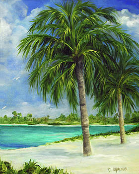 Carolyn Shireman - Tropical Beach Two