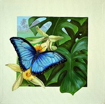 Tropical Blue Morpho by Sherry Cullison