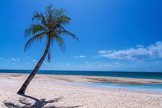 James BO Insogna - Tropical Blue Skies And White Sand Beaches
