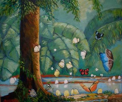 Tropical butterflyes by Jean Pierre Bergoeing