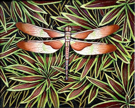 Tropical Dragonfly by Jane Whiting Chrzanoska