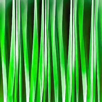 Tropical Environment by Tracey Harrington-Simpson