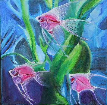 Tropical Fish by Stormy Miller