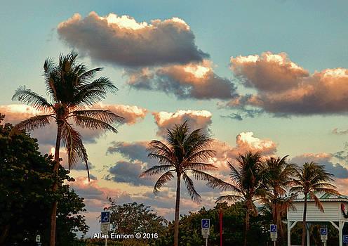 Tropical Florida Sunset by Allan Einhorn