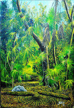 tropical forest Key West by Peter Kulik