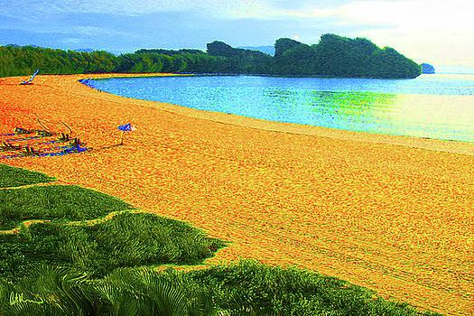 Tropical Freedom by John Brennan