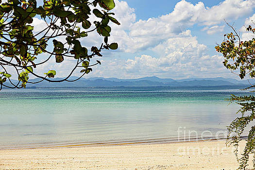 Sophie McAulay - Tropical island beach