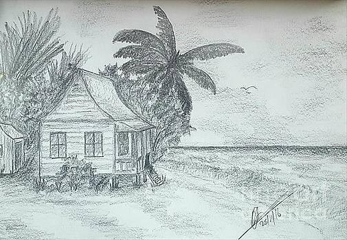 Tropical Island Sea by Collin A Clarke