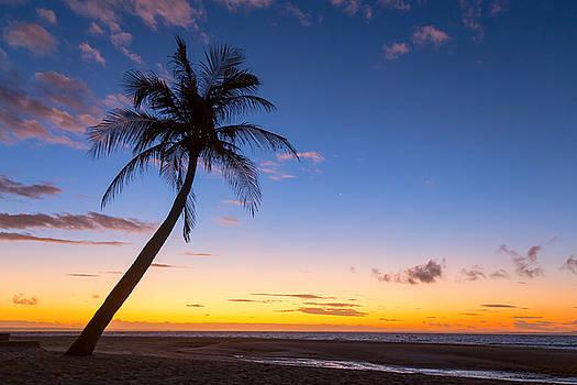 James BO Insogna - Tropical Island Sunrise
