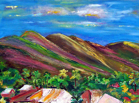 Patricia Taylor - Tropical Mountains