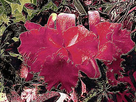 Susan Maxwell Schmidt - Tropical Night Blooms