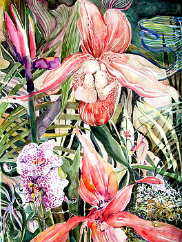Tropical Orchids by Mindy Newman