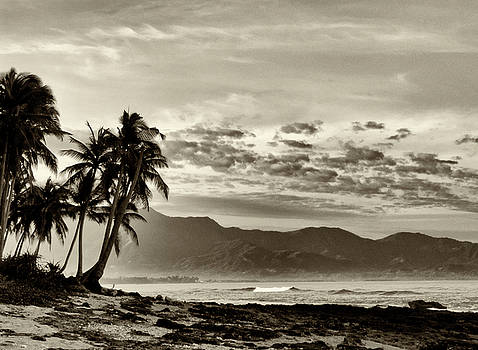 Tropical Paradise  by Skip Nall