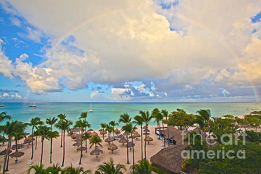 Tropical Rainbows by Christy Woodrow