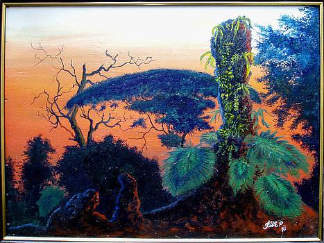 Tropical rainforest by Peter Kulik
