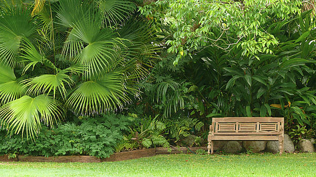 Tropical Seat by Evelyn Tambour