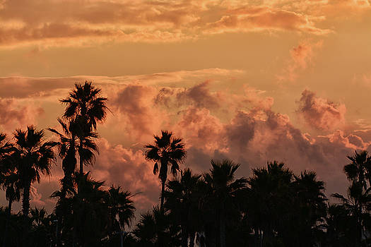 Tropical storm sunrise by Joe Belanger