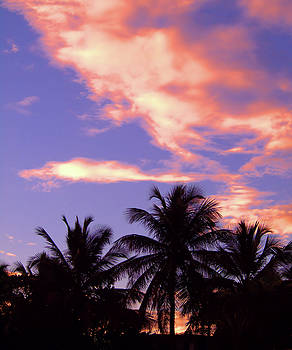 Tropical Sunrise by Newwwman