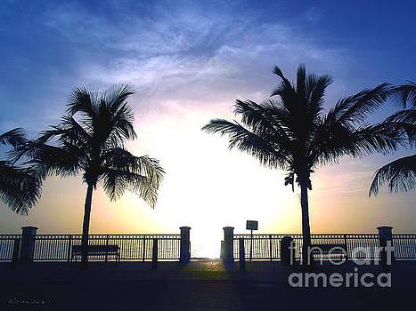 Ricardos Creations - Tropical Sunrise Sescape Vero Beach Florida B1
