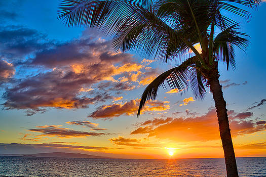 Tropical Sunset by Ivan SABO
