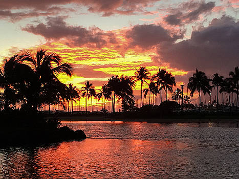 Tropical Sunset by Kimberly Blom-Roemer