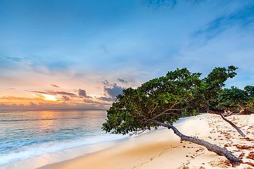 Tropical sunset by Mihai Andritoiu